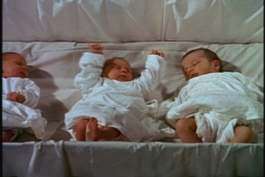Isn't that an odd nursery set-up, with the babies in one big bed?