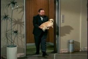 French is tasked with removing the dog, and his body language in this scene is an episode highlight.