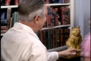 Look at this interesting cat statue in Dr. Felsom's office. I'm guessing his wife takes ceramics because it looks like some of my mother's 1970s output.