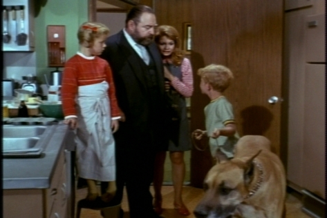 He takes up dog-sitting, while Buffy tries to help French economize by making her own cupcakes.