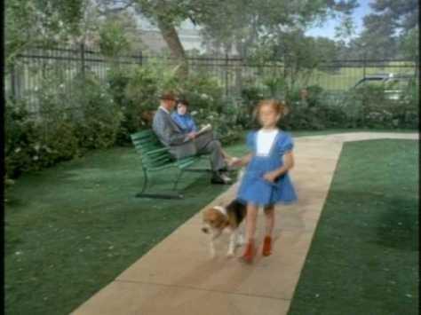 ...and a beagle...