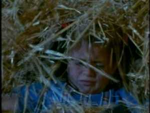 They day's events have left them wary enough that they hide themselves under the hay before going to sleep.
